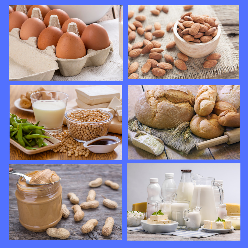 Collage of pictures of allergens: egg, almonds, soy, wheat, peanut and milk.