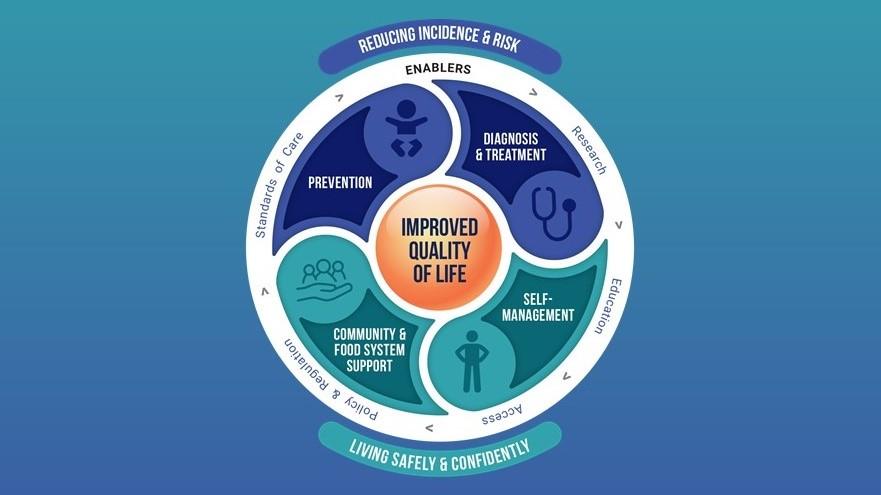 National Food Allergy Action Plan framework